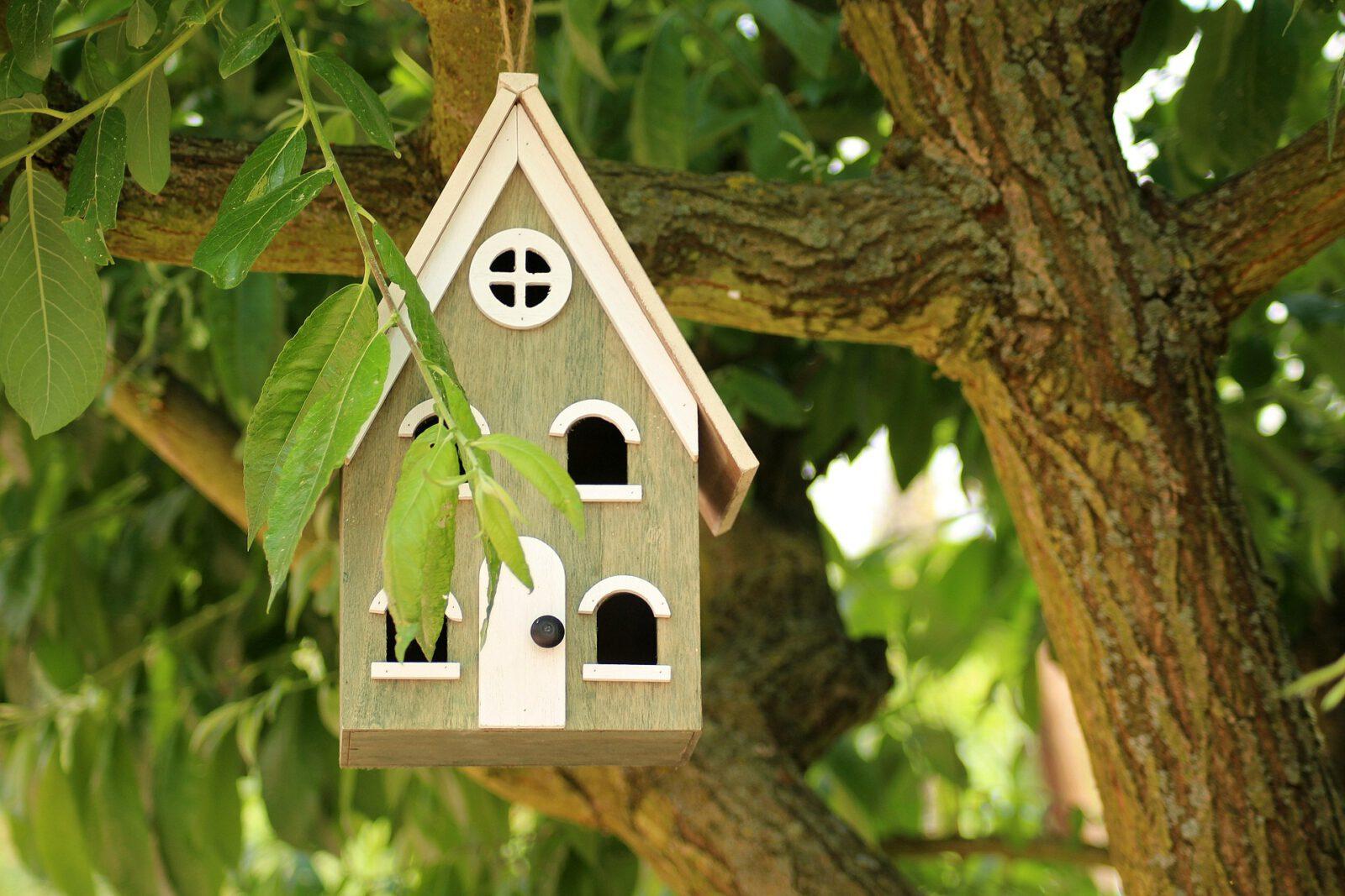 Vogelhuis tuin